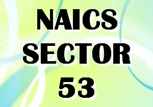 NAICS SECTOR 53