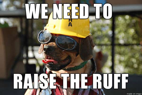 construction-meme-dog