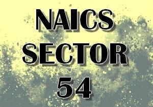 naics sector 54