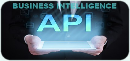 BIZ API INTELLIGENCE